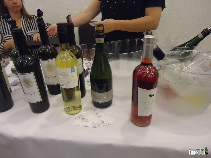 Wine Lovers Importadora
