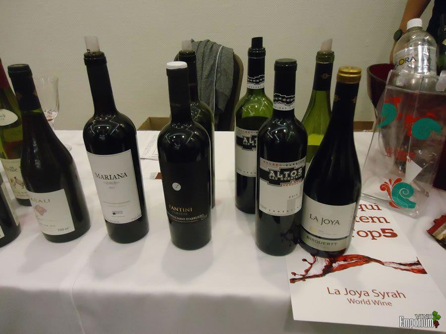 World Wine Importadora