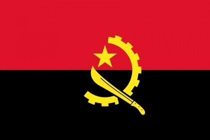 Primeiro vinho de Angola começou a ser comercializado