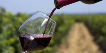 Vinho tinto pode ser útil também na prevenção do cancro colorretal