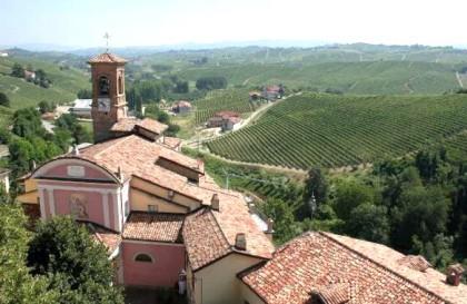 O desafio de compreender um vinho do Piemonte