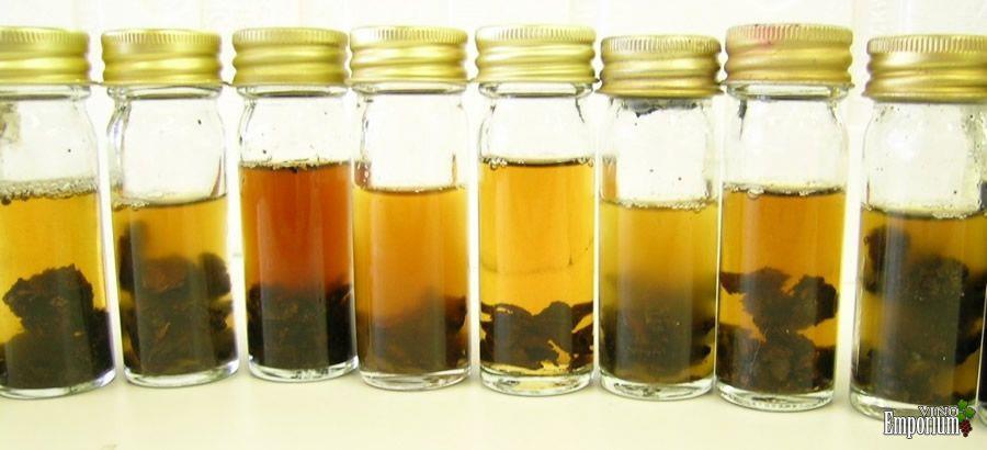 Pedaços de carvalho recolhidos no campo para obter amostras de leveduras