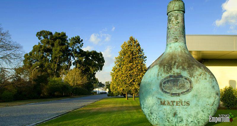 Mateus, vinho ícone da empresa