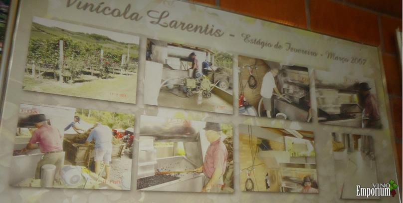 Vino Emporium visita a Villaggio Bonucci Vinhas & Vinhos
