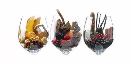 Os vinhos e seus maravilhosos aromas