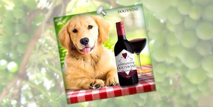 Dog's Wine é a novidade pet para o mercado brasileiro