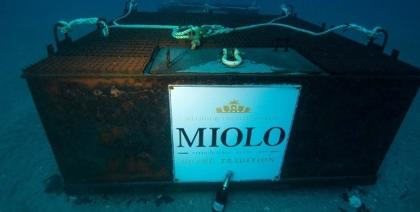 Vinícola brasileira lançará espumante envelhecido no mar