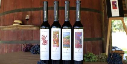 Vinícola brasileira produz vinho experimental com mais de 50 tipos de uva