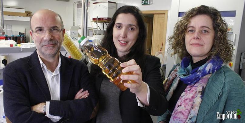Manuel Coimbra, Tasso Rosa e Cláudia Nunes, investigadores do QOPNA, da Universidade de Aveiro