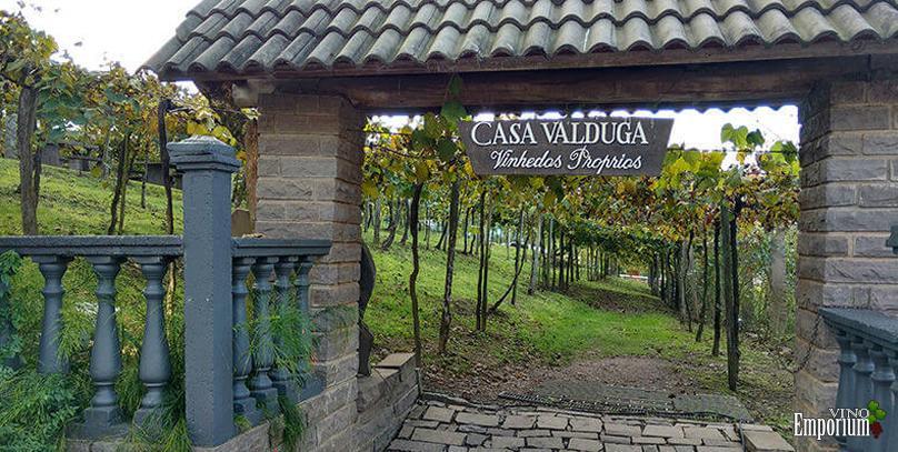 Valduga anuncia abertura de vinícola no Chile