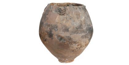Humanos já tomavam vinho há 8 mil anos