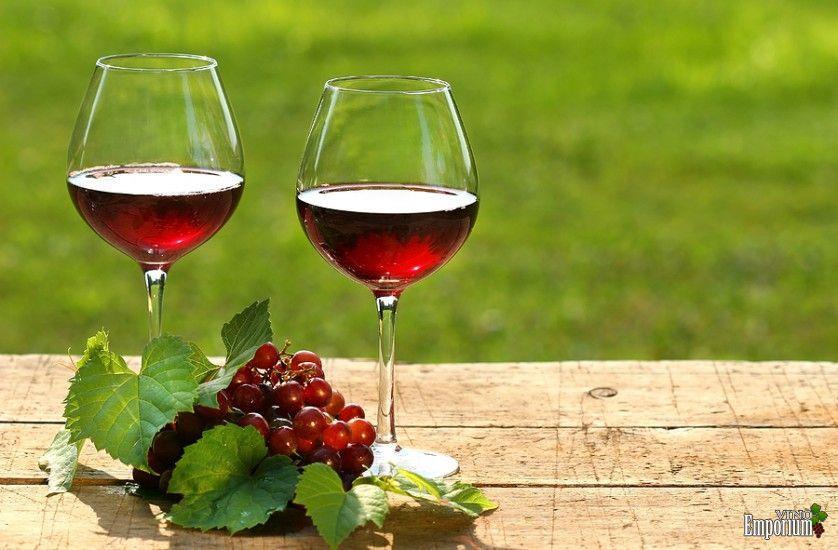 Gosta de vinho e está acima do peso? Parece que essa é a equação perfeita