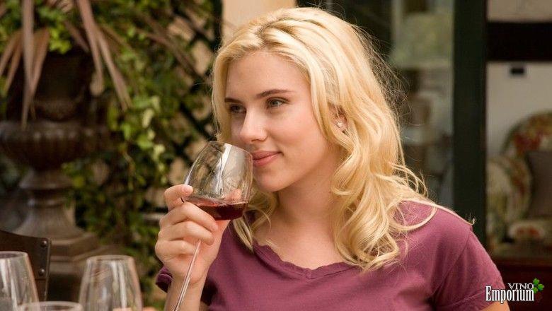 Vicky Cristina Barcelona: filme de Woody Allen reúne astros do cinema para uma taça de vinho (Foto: Reprodução)