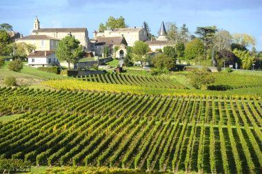 Do Chile a França: saiba onde provar os melhores vinhos