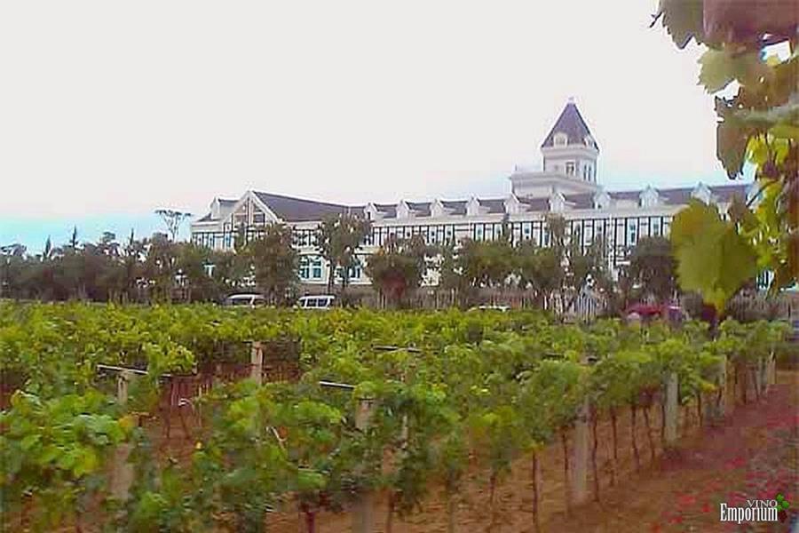 Novas regiões vinícolas para se ficar de olho!