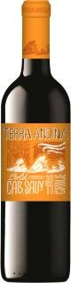 Terra Andina Bold Cabernet Sauvignon (2011)