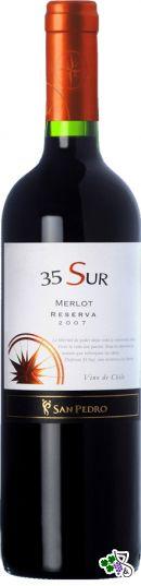 Ficha Técnica: 35 Sur Merlot (2007)