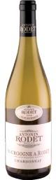 Bourgogne Chardonnay (2008)