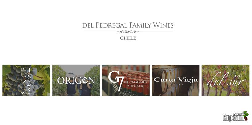 Del Pedregal Family Wines