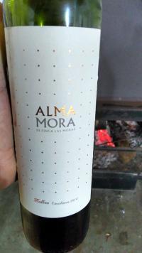 Alma Mora (por Fernando César Martins)