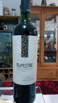 Rupestre (por Fernando César Martins)