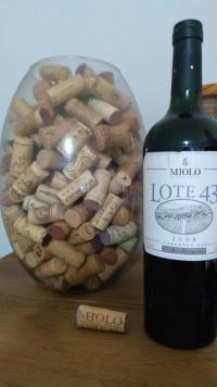 Miolo Lote 43 (por Fernando César Martins)